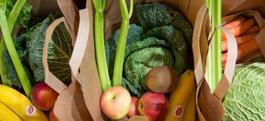 Un menu végétarien chaque semaine dans les restaurants scolaires