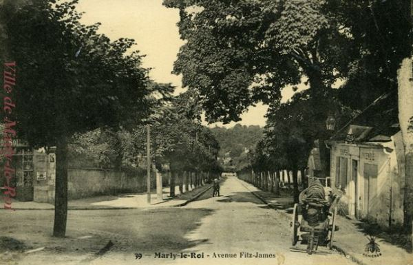 Avenue Fitz-James