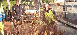 Ramassage des feuilles mortes et désherbage des rues